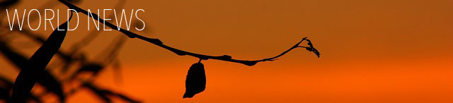 silhouette-251693_640 copy